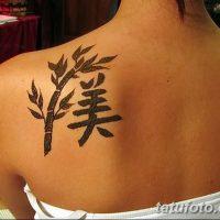 Фото тату бамбук