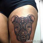 фото тату питбультерьер от 25.10.2017 №002 - tattoo pit bull terrier - tatufoto.com