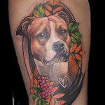 фото тату питбультерьер от 25.10.2017 №006 - tattoo pit bull terrier - tatufoto.com