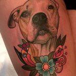 фото тату питбультерьер от 25.10.2017 №010 - tattoo pit bull terrier - tatufoto.com