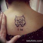 фото тату питбультерьер от 25.10.2017 №014 - tattoo pit bull terrier - tatufoto.com