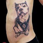 фото тату питбультерьер от 25.10.2017 №018 - tattoo pit bull terrier - tatufoto.com