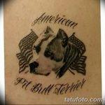 фото тату питбультерьер от 25.10.2017 №024 - tattoo pit bull terrier - tatufoto.com