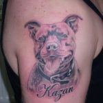 фото тату питбультерьер от 25.10.2017 №032 - tattoo pit bull terrier - tatufoto.com