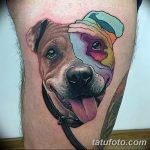 фото тату питбультерьер от 25.10.2017 №039 - tattoo pit bull terrier - tatufoto.com