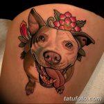 фото тату питбультерьер от 25.10.2017 №050 - tattoo pit bull terrier - tatufoto.com