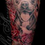 фото тату питбультерьер от 25.10.2017 №060 - tattoo pit bull terrier - tatufoto.com