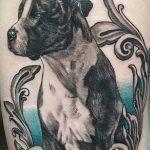 фото тату питбультерьер от 25.10.2017 №067 - tattoo pit bull terrier - tatufoto.com