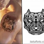 фото тату питбультерьер от 25.10.2017 №085 - tattoo pit bull terrier - tatufoto.com
