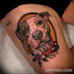 фото тату питбультерьер от 25.10.2017 №092 - tattoo pit bull terrier - tatufoto.com