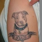 фото тату питбультерьер от 25.10.2017 №093 - tattoo pit bull terrier - tatufoto.com