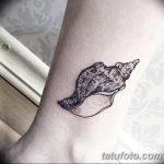 фото тату раковина от 07.10.2017 №030 - tattoo shell - tatufoto.com