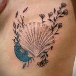 фото тату раковина от 07.10.2017 №041 - tattoo shell - tatufoto.com