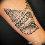 фото тату раковина от 07.10.2017 №052 - tattoo shell - tatufoto.com
