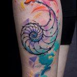 фото тату раковина от 07.10.2017 №075 - tattoo shell - tatufoto.com