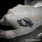 фото тату раковина от 07.10.2017 №099 - tattoo shell - tatufoto.com