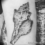 фото тату раковина от 07.10.2017 №101 - tattoo shell - tatufoto.com