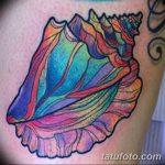 фото тату раковина от 07.10.2017 №114 - tattoo shell - tatufoto.com