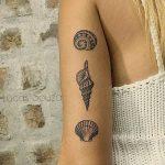 фото тату раковина от 07.10.2017 №117 - tattoo shell - tatufoto.com