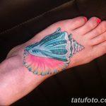 фото тату раковина от 07.10.2017 №127 - tattoo shell - tatufoto.com