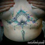 фото тату раковина от 07.10.2017 №133 - tattoo shell - tatufoto.com