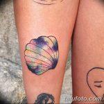 фото тату раковина от 07.10.2017 №135 - tattoo shell - tatufoto.com