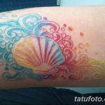 фото тату раковина от 07.10.2017 №153 - tattoo shell - tatufoto.com