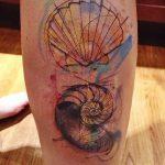 фото тату раковина от 07.10.2017 №154 - tattoo shell - tatufoto.com