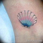 фото тату раковина от 07.10.2017 №158 - tattoo shell - tatufoto.com