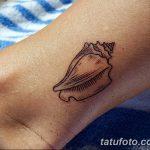 фото тату раковина от 07.10.2017 №172 - tattoo shell - tatufoto.com