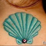 фото тату раковина от 07.10.2017 №174 - tattoo shell - tatufoto.com