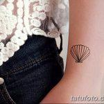 фото тату раковина от 07.10.2017 №175 - tattoo shell - tatufoto.com