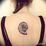 фото тату раковина от 07.10.2017 №182 - tattoo shell - tatufoto.com