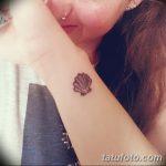 фото тату раковина от 07.10.2017 №183 - tattoo shell - tatufoto.com
