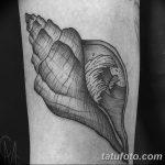 фото тату раковина от 07.10.2017 №200 - tattoo shell - tatufoto.com