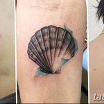 фото тату раковина от 07.10.2017 №201 - tattoo shell - tatufoto.com