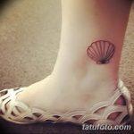фото тату раковина от 07.10.2017 №203 - tattoo shell - tatufoto.com
