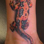 фото тату саламандра от 07.10.2017 №005 - tattoo salamander - tatufoto.com