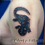 фото тату саламандра от 07.10.2017 №015 - tattoo salamander - tatufoto.com