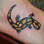 фото тату саламандра от 07.10.2017 №027 - tattoo salamander - tatufoto.com