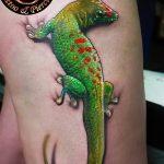 фото тату саламандра от 07.10.2017 №064 - tattoo salamander - tatufoto.com