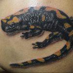 фото тату саламандра от 07.10.2017 №099 - tattoo salamander - tatufoto.com