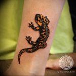 фото тату саламандра от 07.10.2017 №134 - tattoo salamander - tatufoto.com