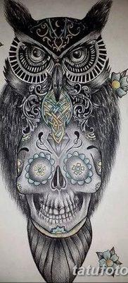 фото тату сова с черепом от 23.10.2017 №004 — tattoo owl with a skull — tatufoto.com