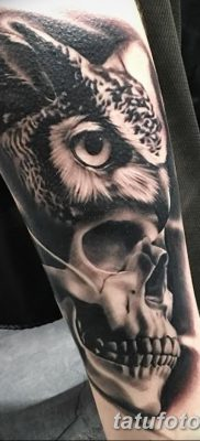 фото тату сова с черепом от 23.10.2017 №007 — tattoo owl with a skull — tatufoto.com