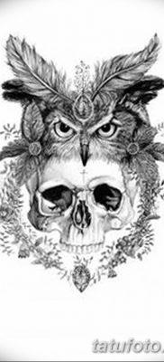 фото тату сова с черепом от 23.10.2017 №009 — tattoo owl with a skull — tatufoto.com
