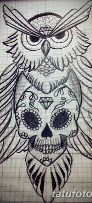 фото тату сова с черепом от 23.10.2017 №015 – tattoo owl with a skull – tatufoto.com