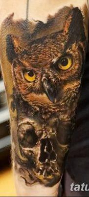 фото тату сова с черепом от 23.10.2017 №023 — tattoo owl with a skull — tatufoto.com