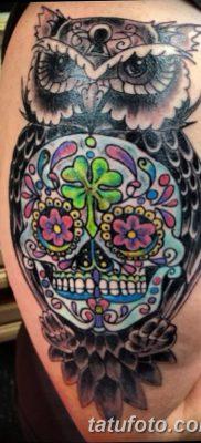 фото тату сова с черепом от 23.10.2017 №029 – tattoo owl with a skull – tatufoto.com