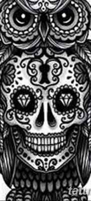 фото тату сова с черепом от 23.10.2017 №030 – tattoo owl with a skull – tatufoto.com